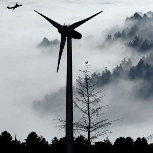 Ökostrom vegan nachhaltig Windkraft
