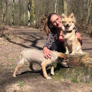sara und lilly hund beißt kind tierschutzhund