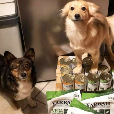 Yarrah Hundefutter Vega