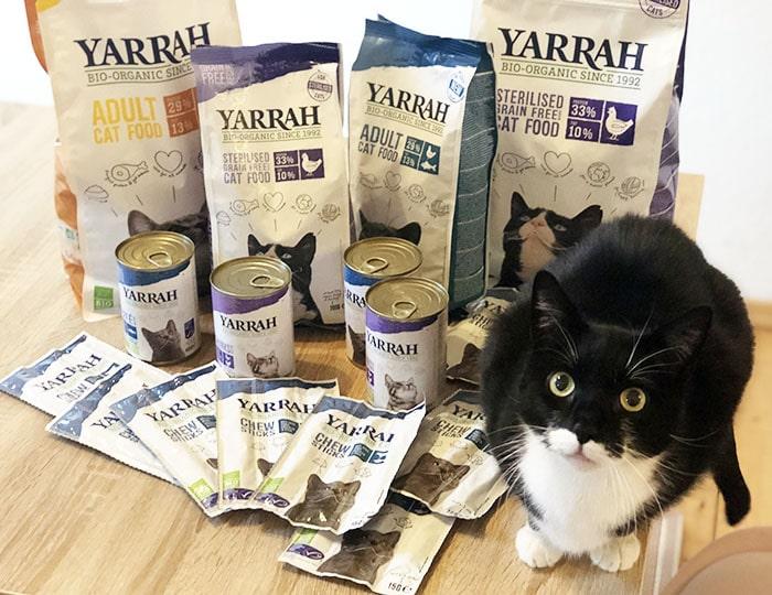Katzenfutter von Yarrah Bio Siegel Erfahrungen Vergleich Test Futter Katze