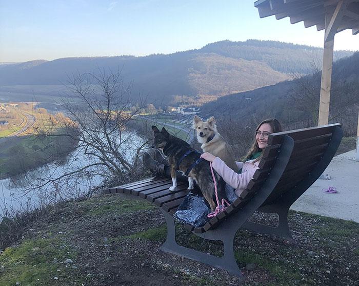 urlaub mit hund an der mosel