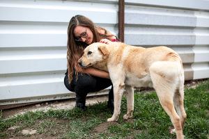 Auslandstierschutz seriös Tierschutz Tierheimhund